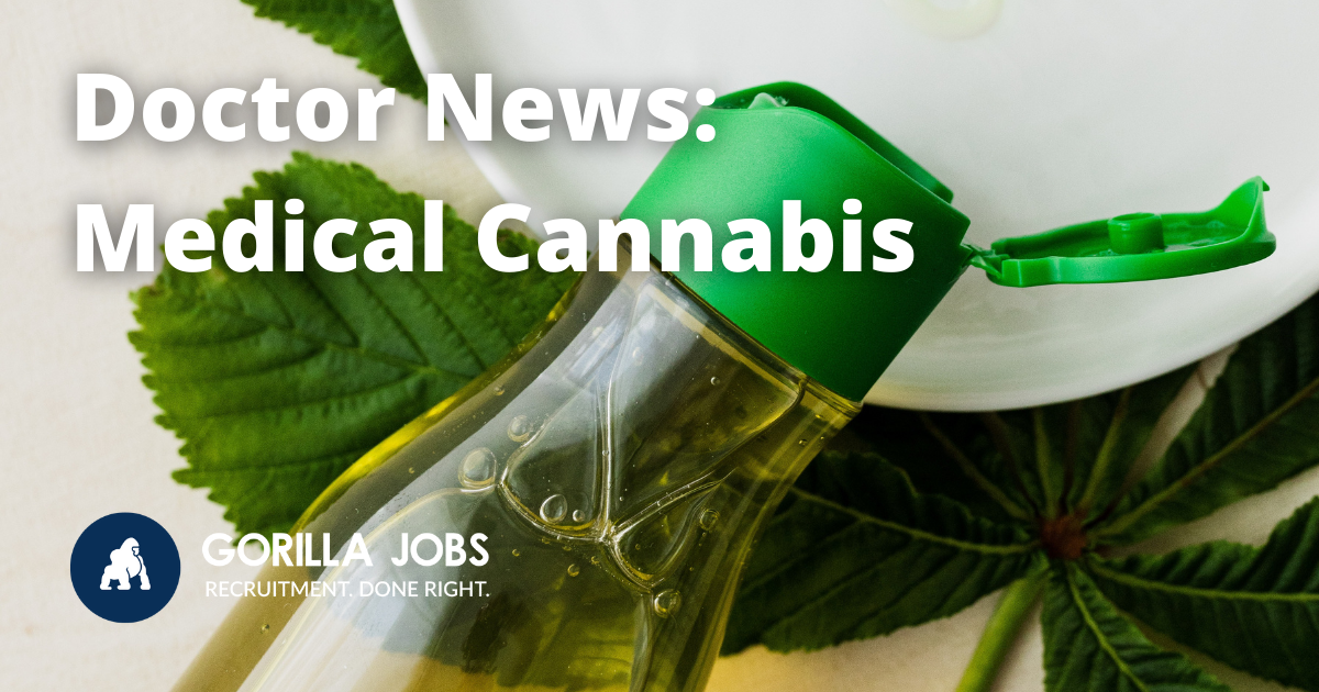 Gorilla Jobs Blog Access to Medical Cannabis Plant Oil Squeezing Out of Bottle